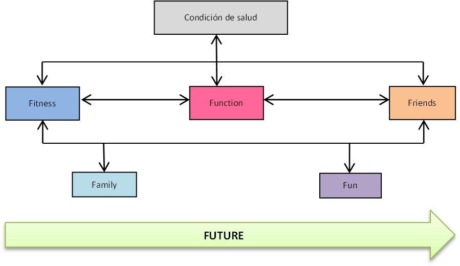 Diagrama-interrenacional - Que diversidad funcional